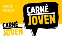 Cursos online totalmente gratuitos para los usuarios del Carné Joven
